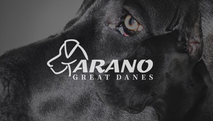 Breeder of great dane, dog logo